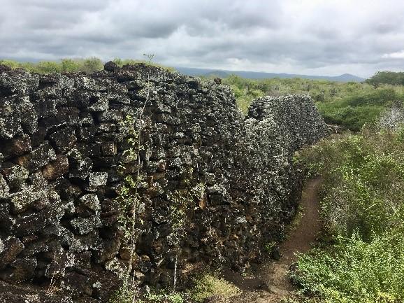 Muro de las Lágrimas (Mauer der Tränen)