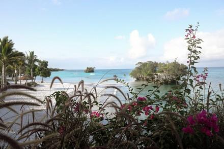 Strandblick mit Blumen