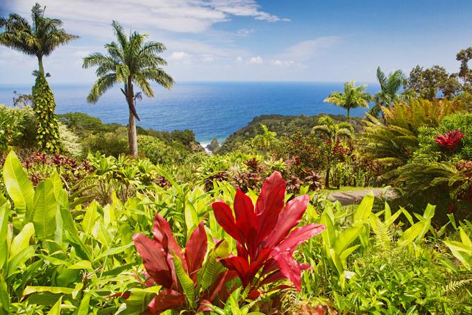 Hawaï, mes conseils pour Maui et Kauai