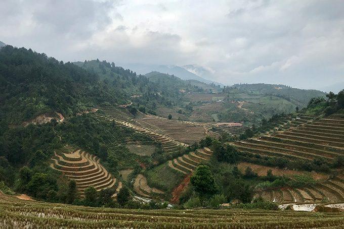 Trekking in Mu Cang Chai