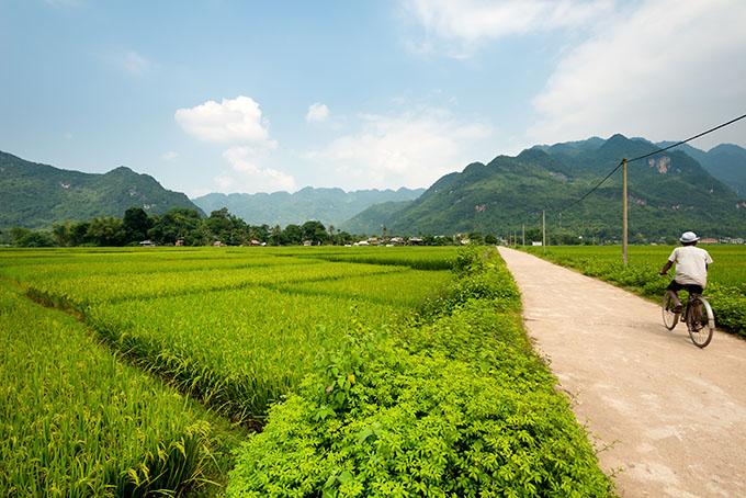 Mit dem Bike in Vietnam unterwegs