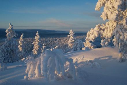 Wintermärchen in Finnisch Lappland