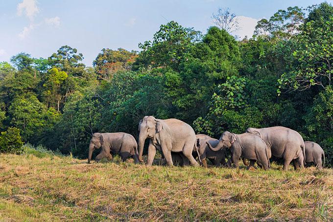 Artenschutz ist uns wichtig