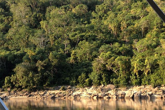 Bootsfahrt auf dem Rufiji River