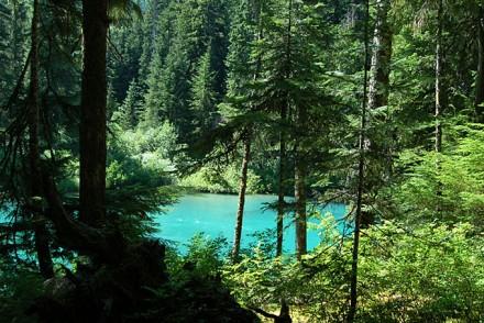 Cheakamus Lake, BC Kanada