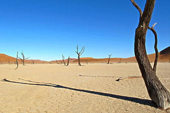Flitterwochen in Namibia