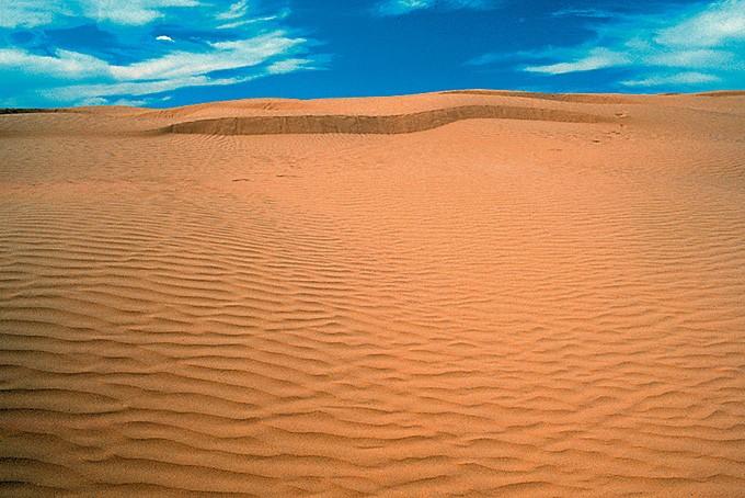 Die Great Sand Hills