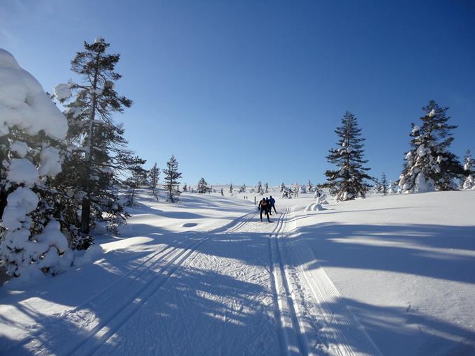 Langlaufen in Lappland: Meine Langlaufreise nach Äkäslompolo im März 2013