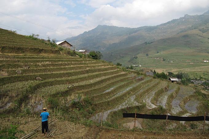 8 Tipps für unvergessliche Vietnam-Erlebnisse