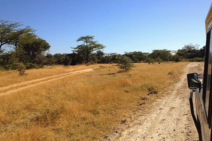 Impressionen vom Selous Nationalpark