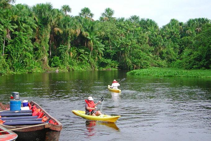 Kajaken mit den Pirañas im Orinoco Delta