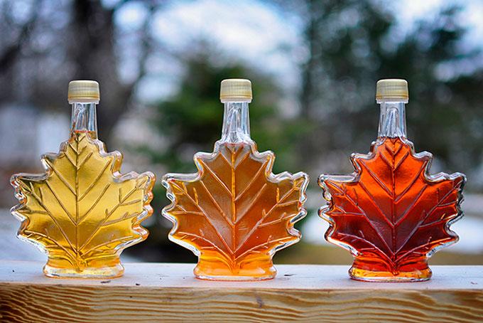 Ahornsirup – das Gold Kanada