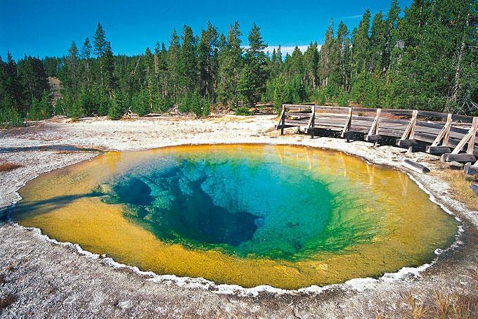 Morning Glory Pool im Yellowstone Nationalpark, Wyoming, Montana und Idaho